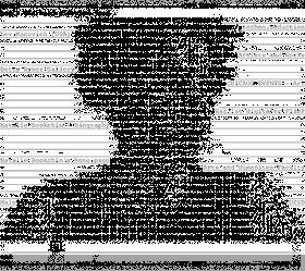 Natalie Bookchin ASCII